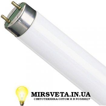Лампа люминесцентная 30W TL-D 30W/54-765 G13 Philips